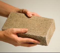 Bio-Bricks