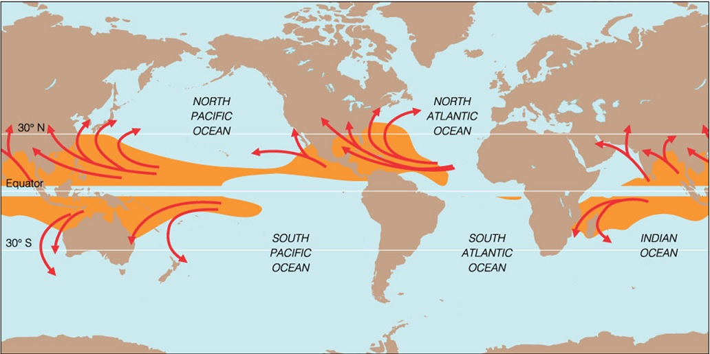 Pacific-Ocean