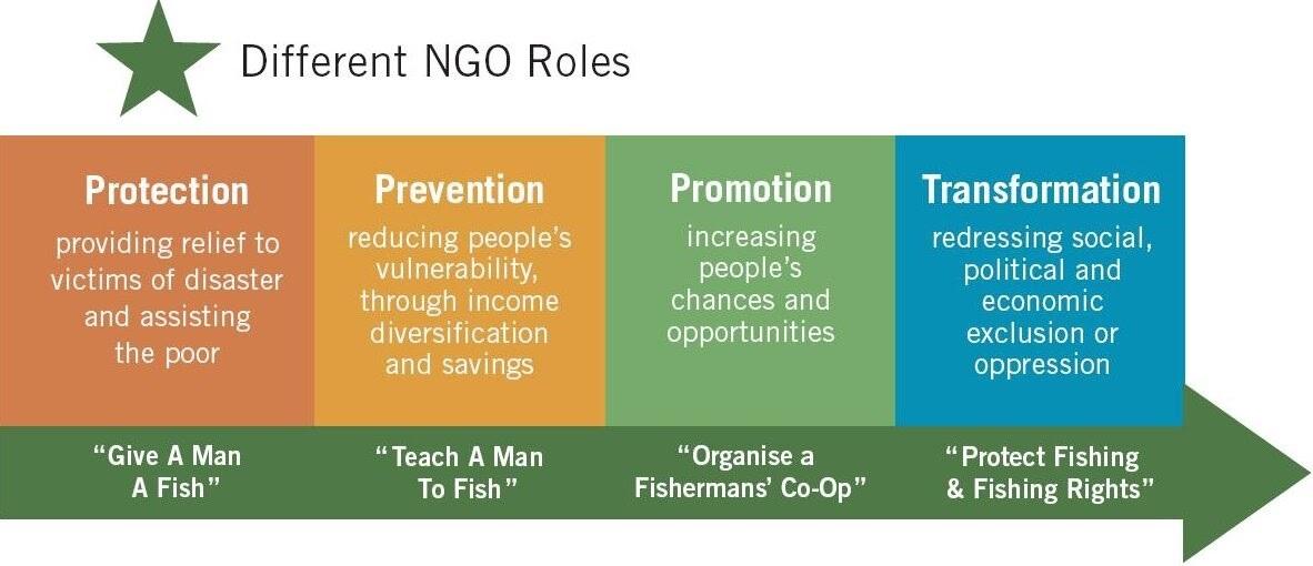 NGO-Roles