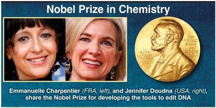 Nobel-prize-in-chemistry