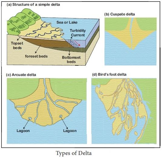 Types-of-Delta