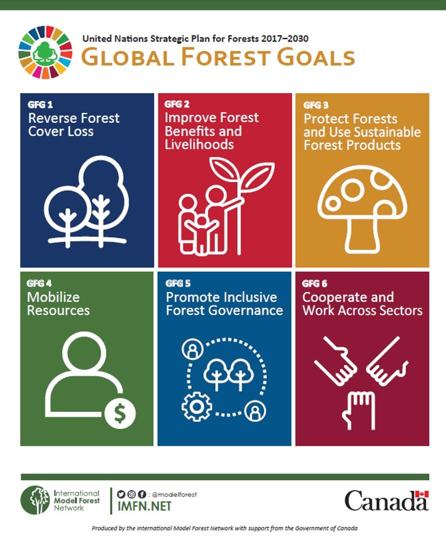 Global-Forest-Goals