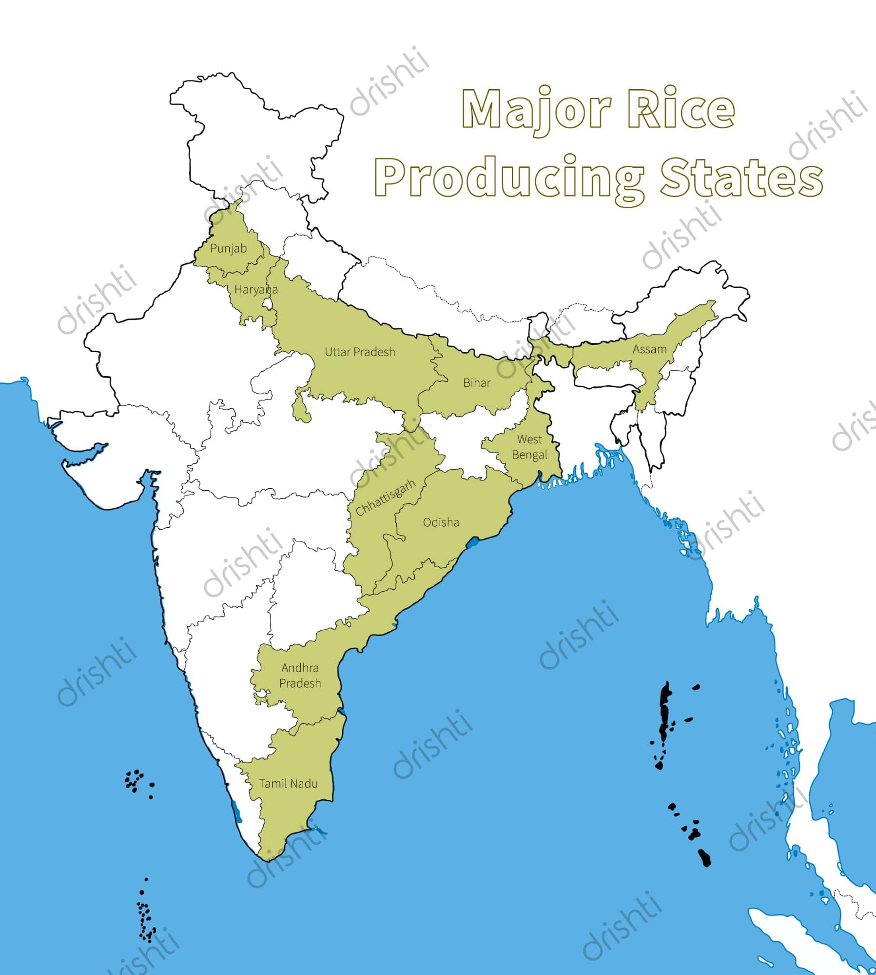 major crop agriculture map of india Cropping Patterns And Major Crops Of India Part One major crop agriculture map of india
